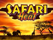 Играть онлайн Safari Heat